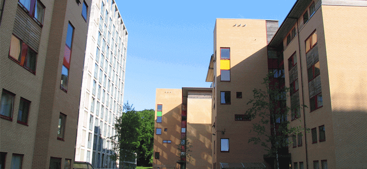 Exterior view of Singleton Park Campus Residences in the sun light