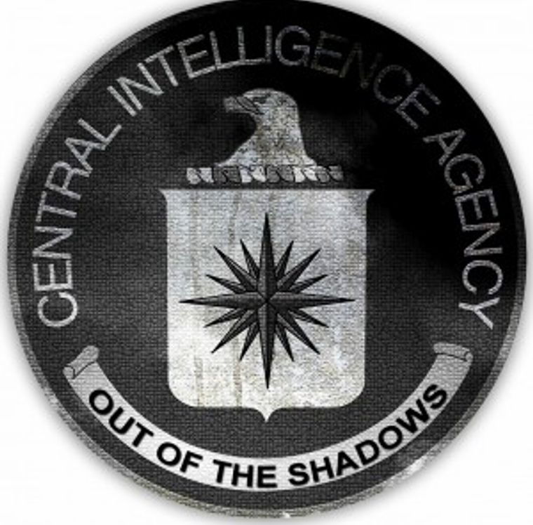 Logo for the out of the shadows project
