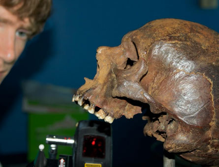 Research on skull from the warship, the Mary Rose