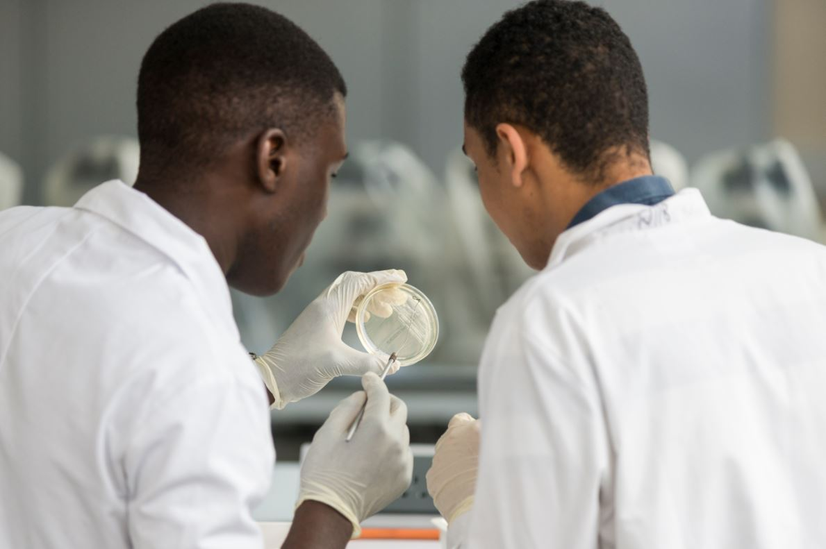 KS5 Students study in a laboratory
