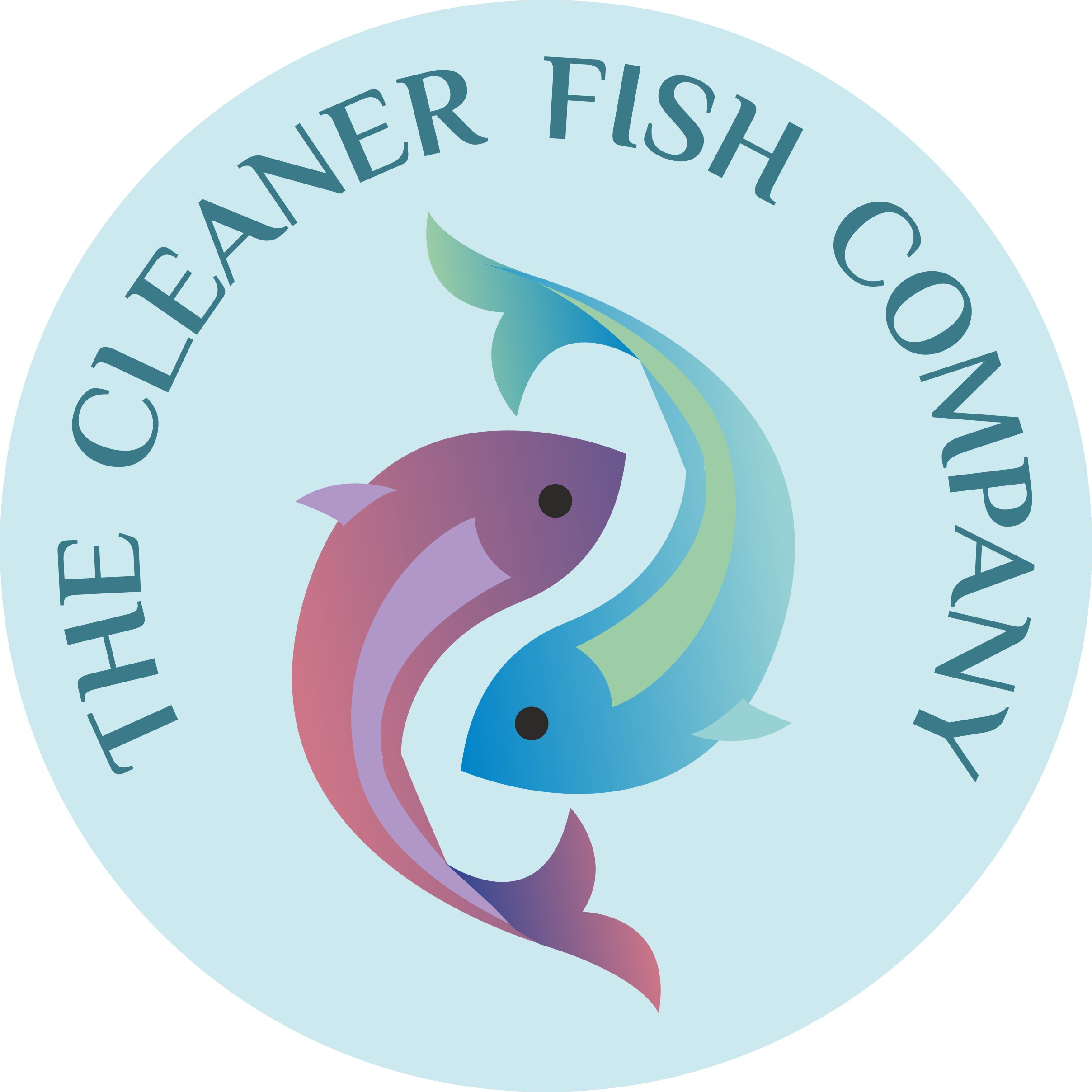 Cleaner Fish Company logo