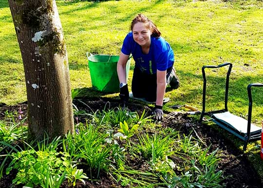 A grounds volunteer female wearing blue shirt planting