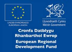 ERDF logo for RISE press release
