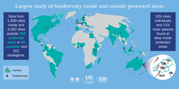 Global diversity infographiclarger