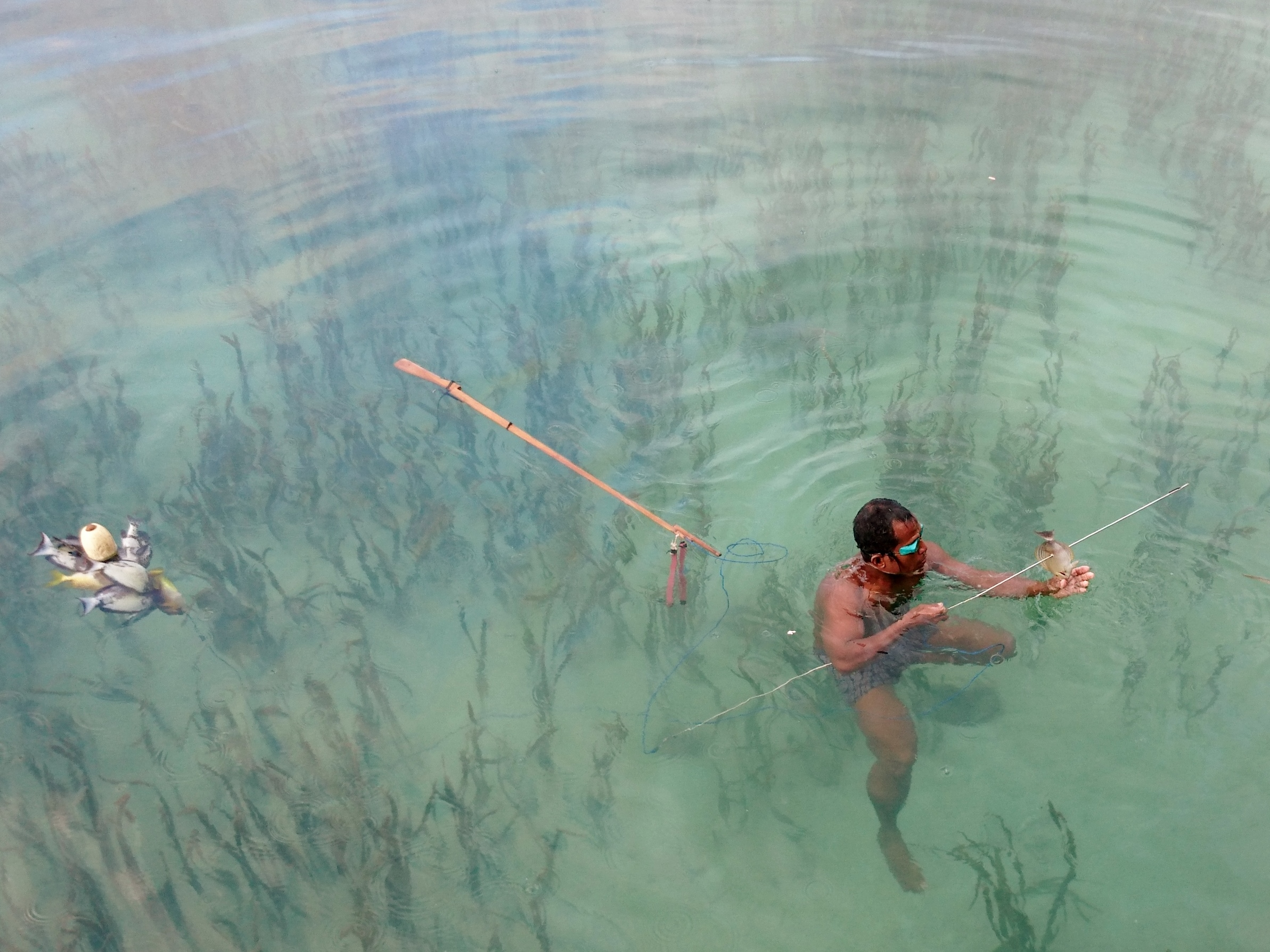 Indigenous fisher spear fishing in Indonesia