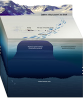 LarsenC ice shelf graphic