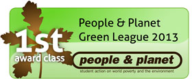 Green league First 2013 badge
