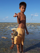 Seagrass indonesian boy