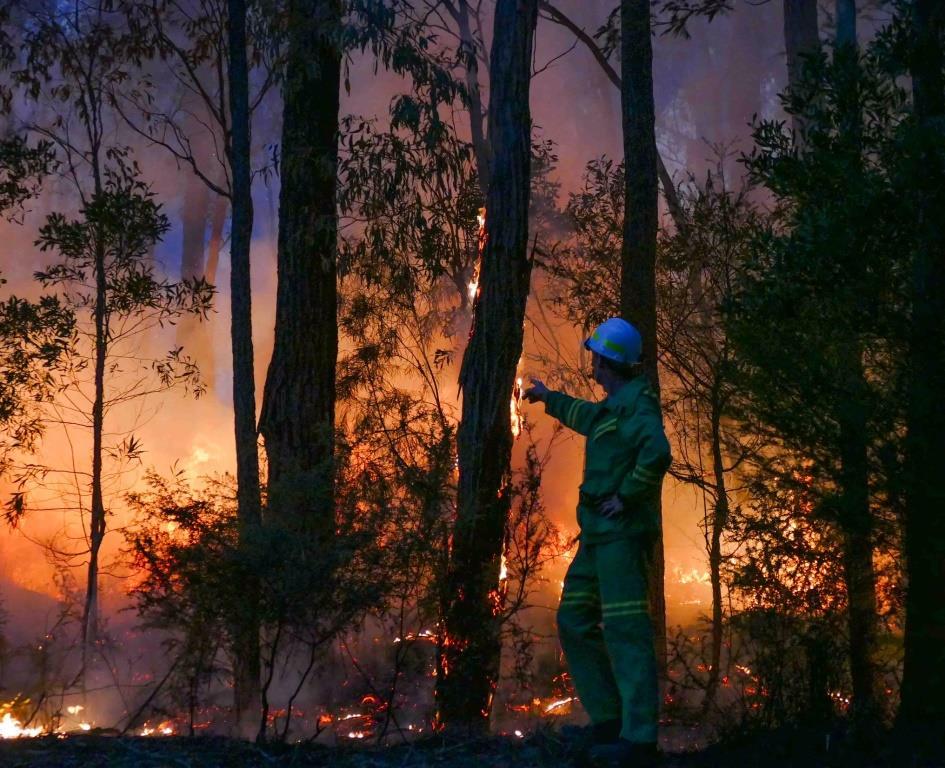 Wildfire  - Stefan Doerr