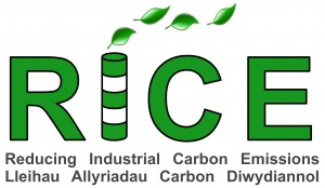 Reduced Industrial Carbon Emissions (RICE) initiative