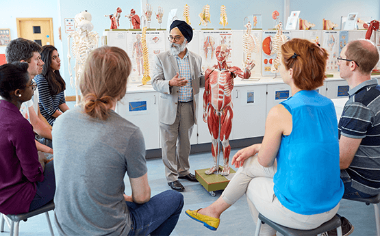 Graduate Entry Medicine Anatomy Teaching