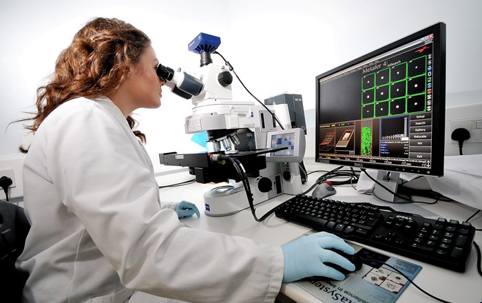Researcher looking through microscope in a laboratory.