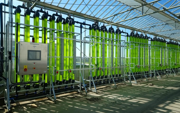 Project reveals how algae could play crucial role in sustainable food production
