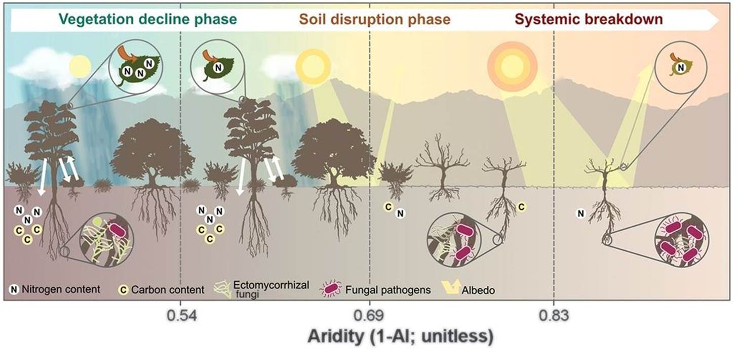 Major study shows climate change can cause abrupt impacts on dryland ecosystems