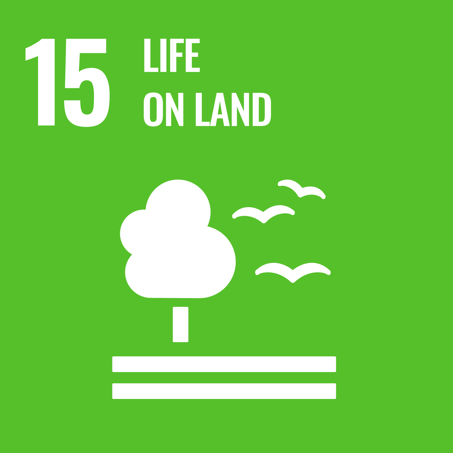 UN Sustainable goal - Life on Land