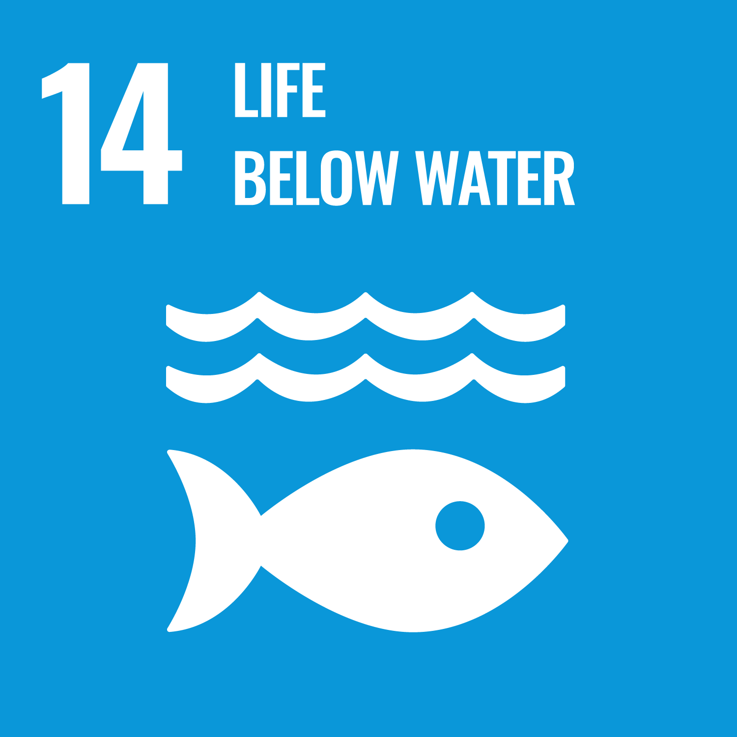 UN Sustainable goal - Life below water