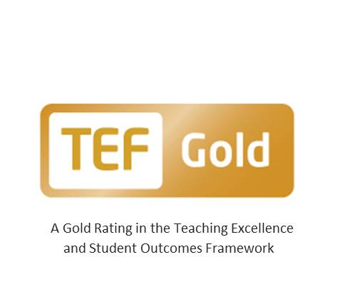 Teaching Excellence Framework Logo