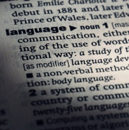 Language dictionary entry